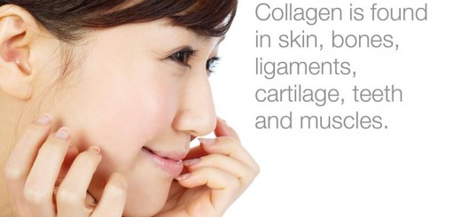 shaklee collagen powder 6