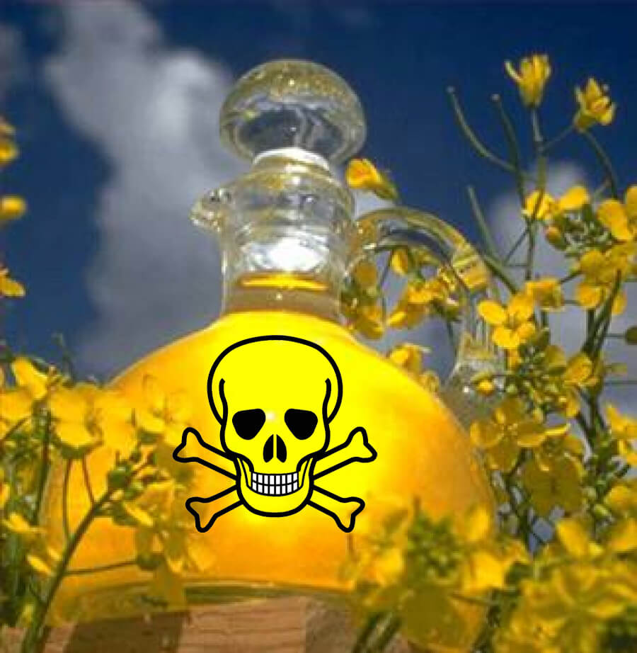 Canola-oil-1 {focus_keyword} Terkejut Sebenarnya Minyak Canola Adalah Tak Baik Untuk Kesihatan Canola oil 1