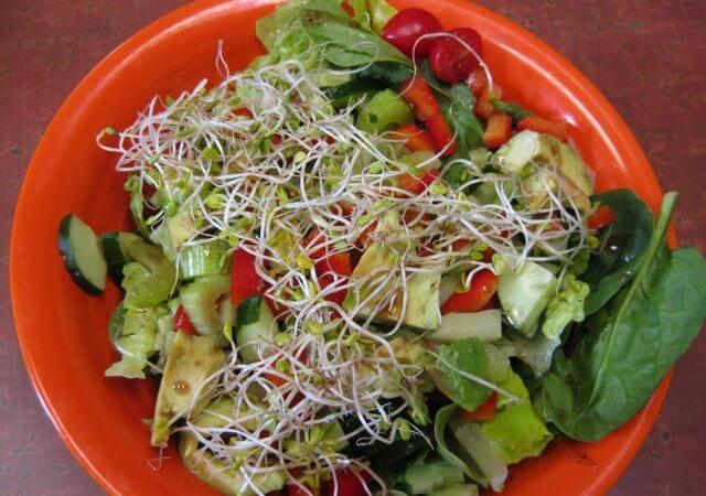 Makanan untuk pesakit gout serangan gout 9 Cara Untuk Kurangkan Serangan Gout raw salad1