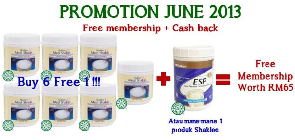 Promotion June 2013 – Mealshakes