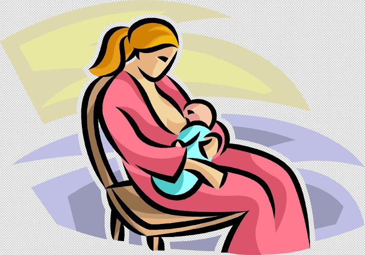 Panduan Penyusuan Susu Ibu