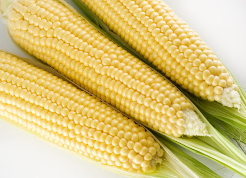 bolehkah makan jagung selepas bersalin