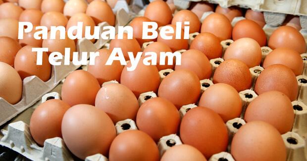 Info Pasal Telur, Kenapa Ade Telur Murah dan Ade Telur Mahal?