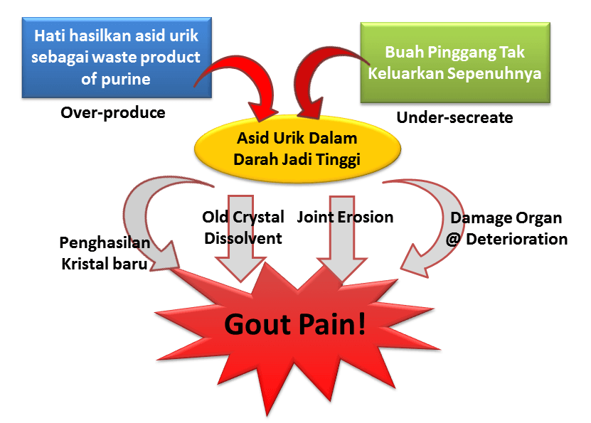 rawatan penyakit gout cara hilangkan sakit gout